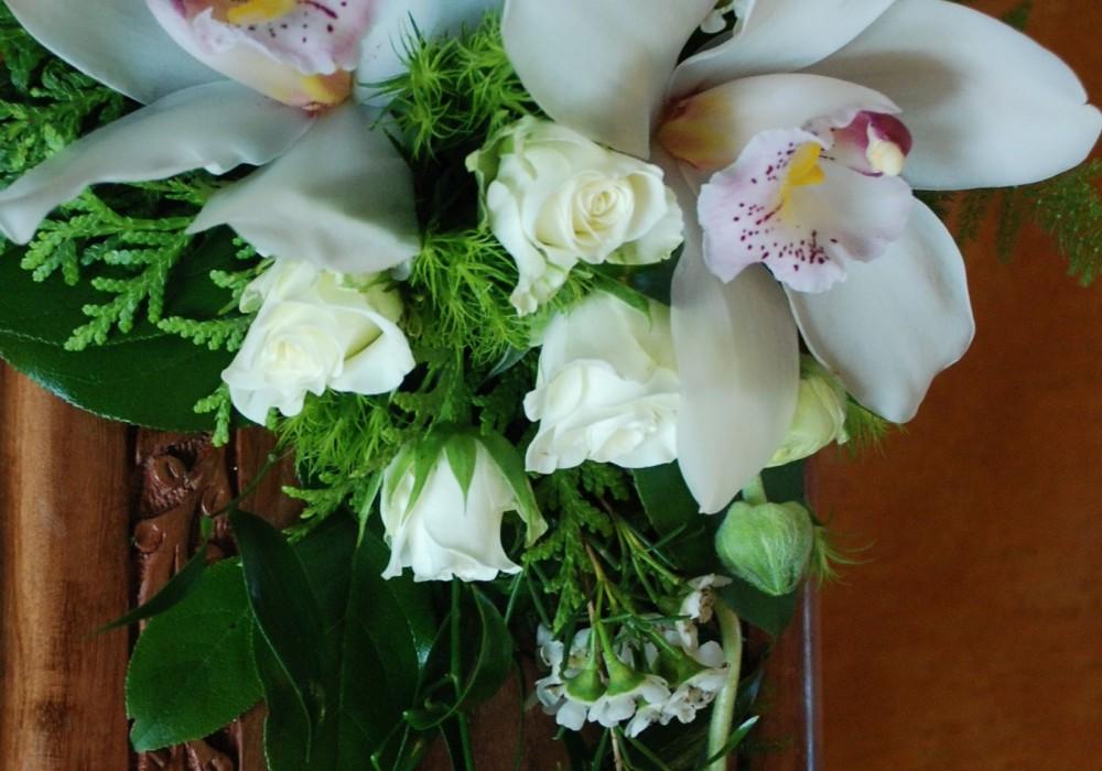 urnil orhideed